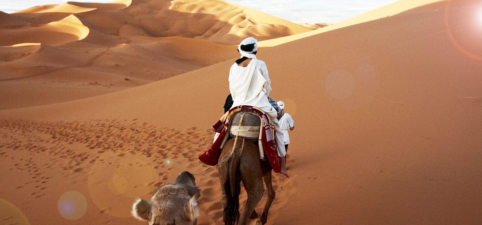 marrakech desierto oferta noche
